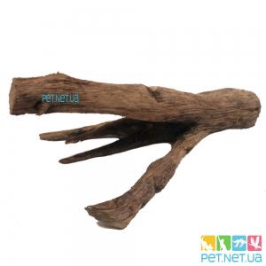Коряга Натуральная в Аквариум - 953